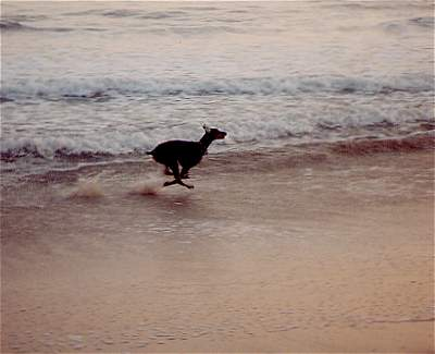 Running faster on the beach